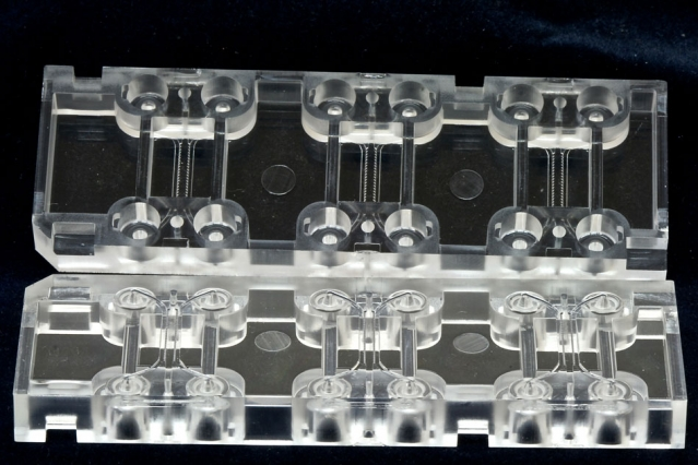 AIM Biotech's microfluidics device (shown here) has an array of culturing sections, each with three chambers: a middle chamber for hydrogel and any cell type, and two side channels for culturing additional cell types.