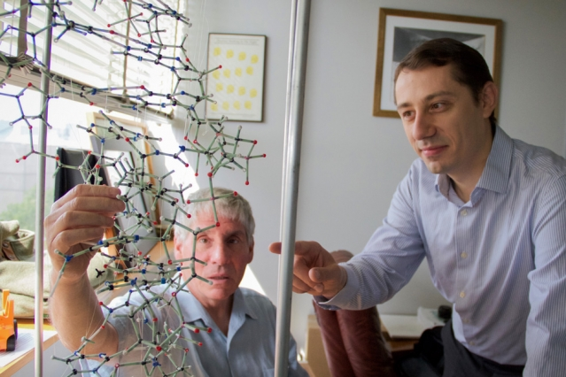 Bogdan Fedeles (right), a research associate in the MIT Department of Biological Engineering and lead author on a new paper on the link between chronic inflammation and cancer, examines a DNA model with professor John Essigmann, who led the current research.