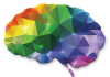 - brain 4 100x70 - Scienmag