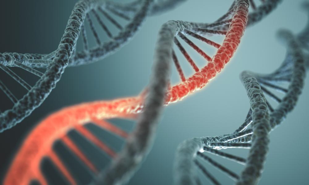 genetics 6