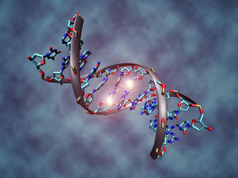 IMAGE Epigenetics: New tool for precision medicine