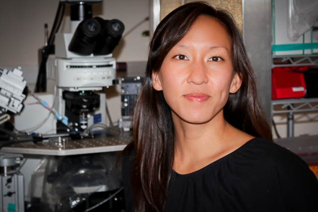Kay Tye, the Whitehead Career Development Assistant Professor of Brain and Cognitive Sciences and a member of the Picower Institute for Learning and Memory, has been awarded the 2016 Freedman Prize for Exceptional Basic Research.