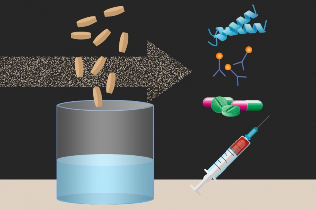 Researchers at MIT and other institutions have created tiny freeze-dried pellets that include all of the molecular machinery needed to translate DNA into proteins, which could form the basis for on-demand production of drugs and vaccines.