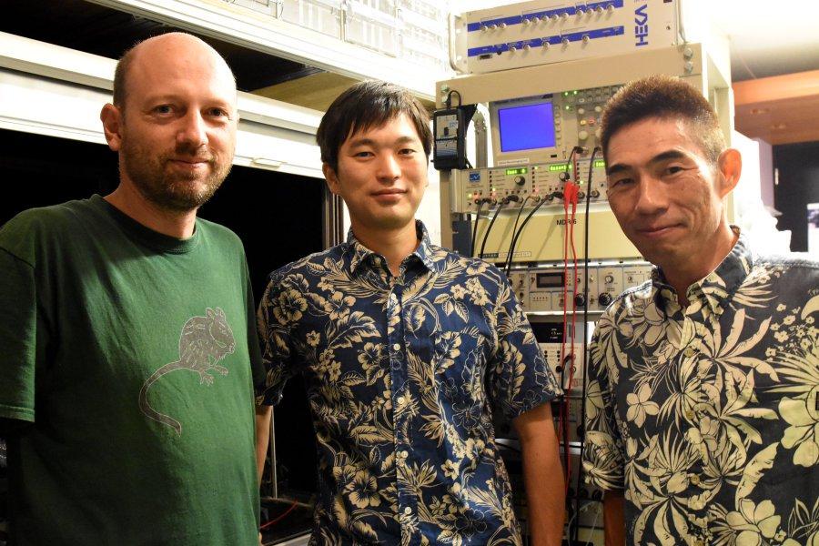 Prof. Bernd Kuhn, Dr. Akihiro Funamizu and Prof. Kenji Doya. Credit: Image courtesy of Okinawa Institute of Science and Technology Graduate University - OIST