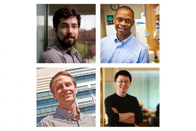 Clockwise from top left: MIT professors Ed Boyden, Jacquin Niles, Feng Zhang, and Matthew Vander Heiden have been named HHMI Faculty Scholars.