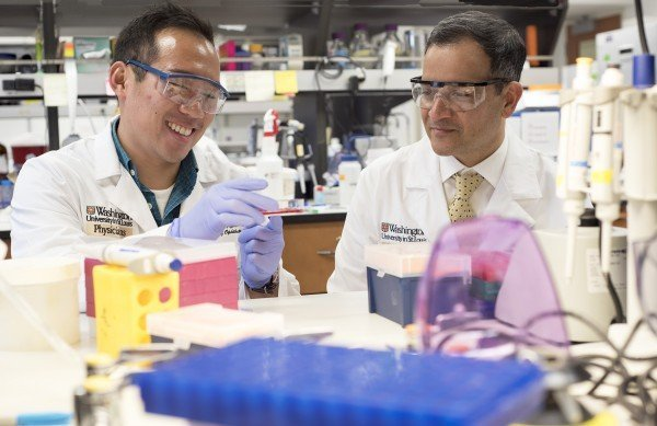 MD/PhD student Jonathan Lin (left) and Rajendra S. Apte, MD, PhD, of Washington University School of Medicine in St. Louis. Credit: Robert Boston / Washington University