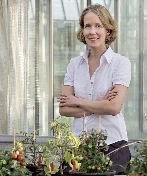 plant molecular biologist Professor Brigitte Poppenberger