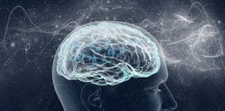 - neural580 324x160 - Scienmag