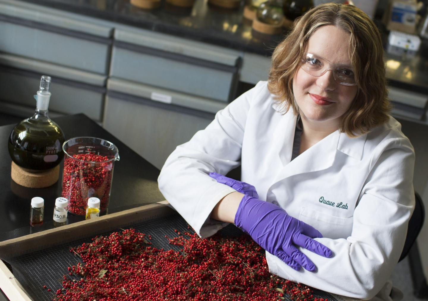 IMAGE  - 132852 web 1 - Brazilian peppertree packs power to knock out antibiotic-resistant bacteria