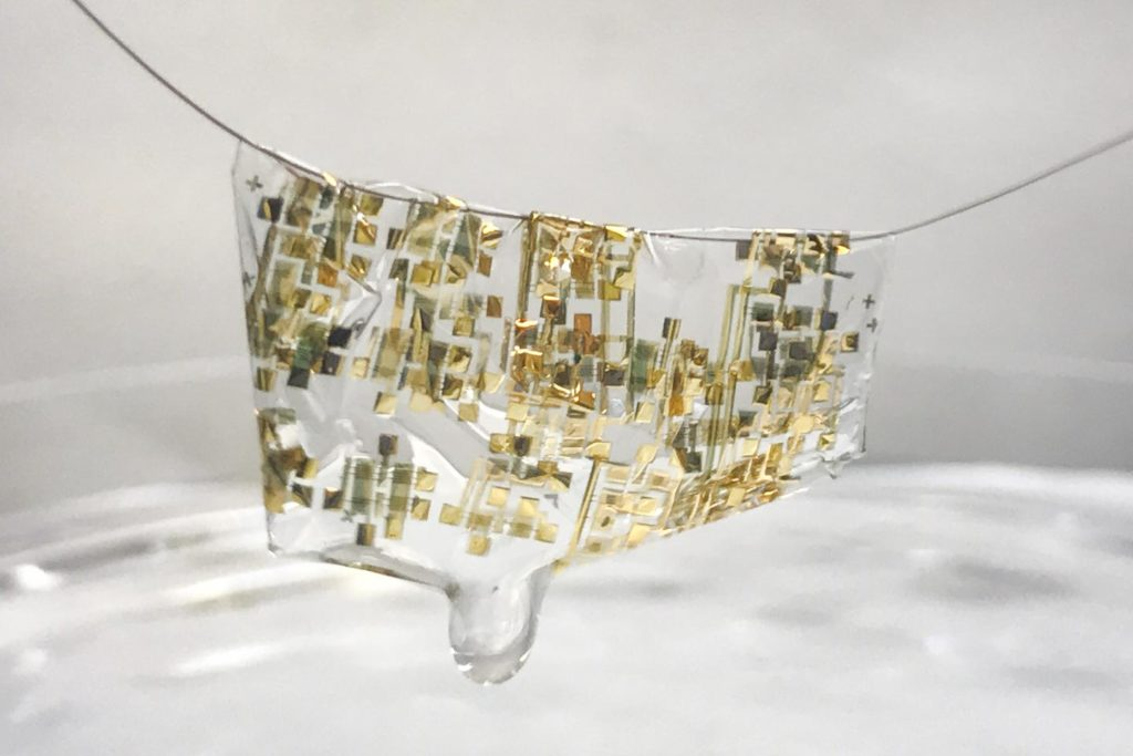 - standford electrical 1024x683 - Flexible, organic and biodegradable: Stanford researchers develop new wave of electronics