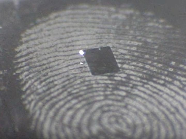 Forensic Fingerprint - cover