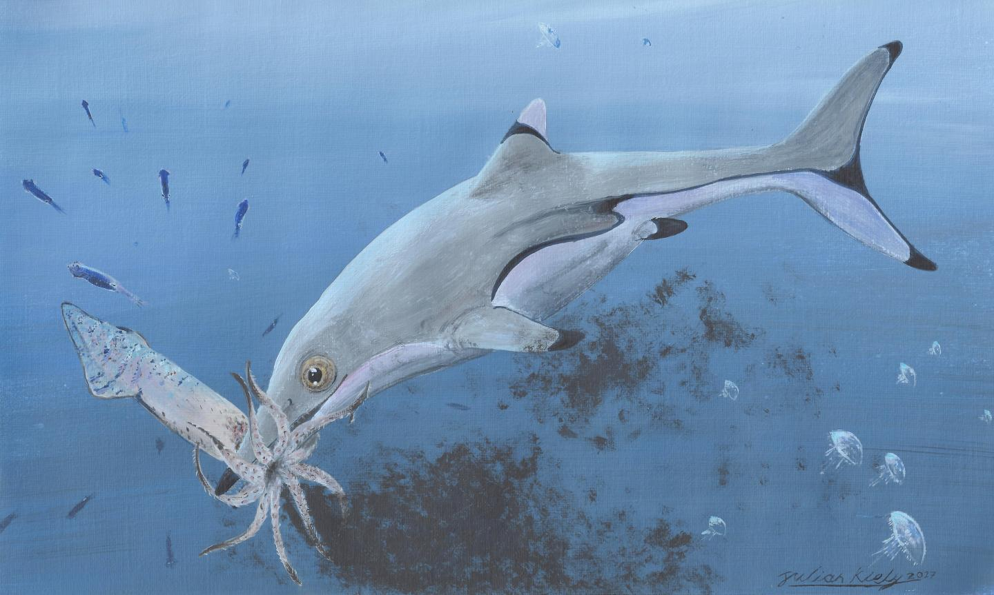 Prehistoric squid was last meal of newborn ichthyosaur 200 million years ago