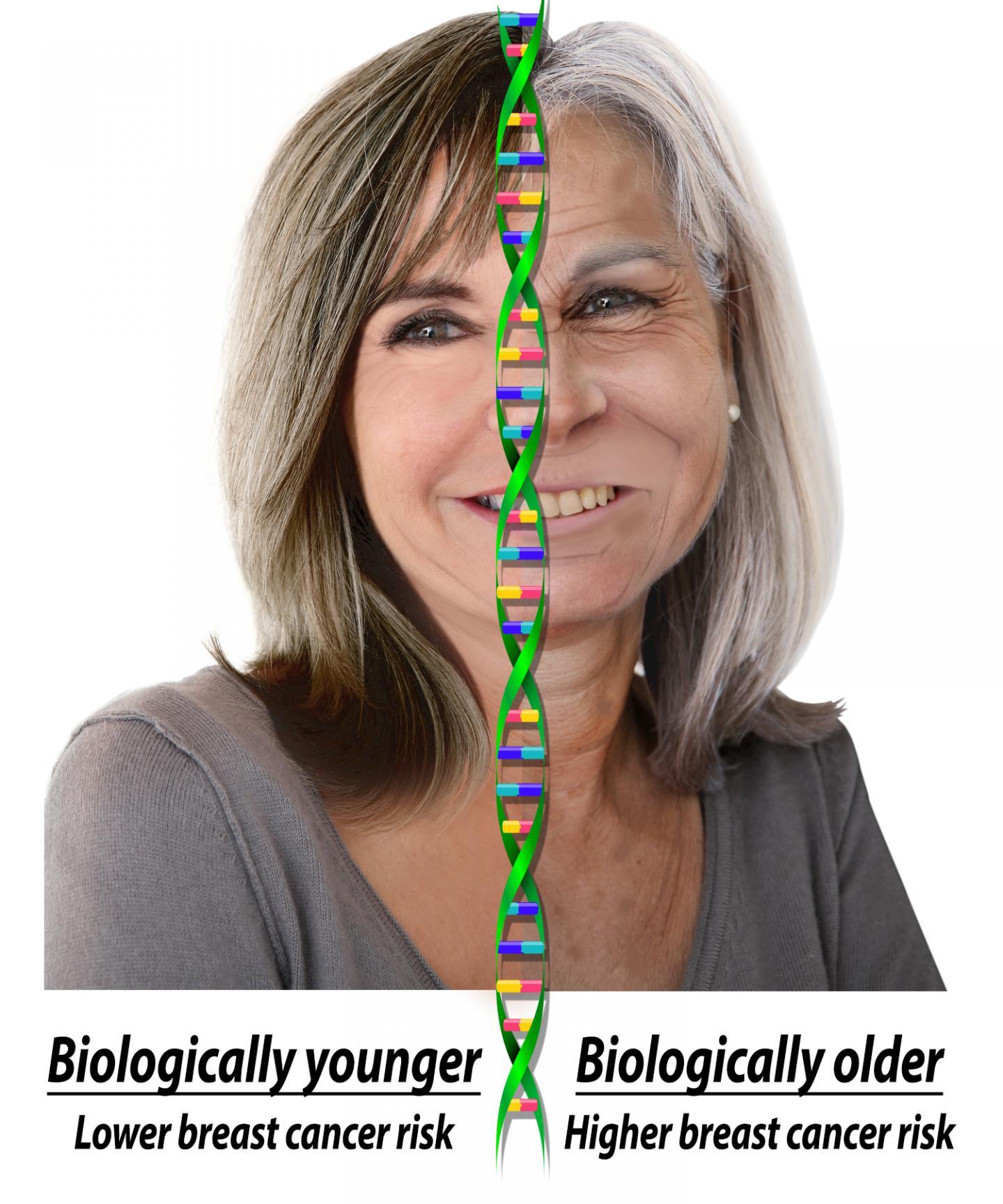 Jewish women over 50 years old