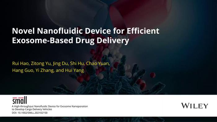 Novel nanofluidic device for efficient exosome-based drug delivery